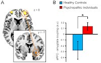 Prefrontal - amygdala connectivity is reduced in psychopathic offenders during control of emotional actions